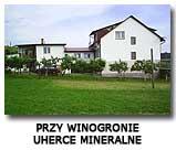 Przy Winogronie Uherce Mineralne Bieszczady