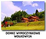 Domki w Wołkowyi