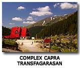 Complex Turystyczny Capra Transfagarasan