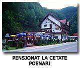 Pensjonat La Cetate Fogarasze