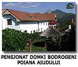 Pensjonat domki Bodrogeni